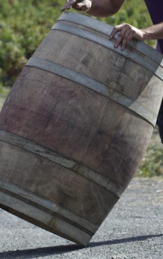 Vin Nature et Vin Sans Soufre